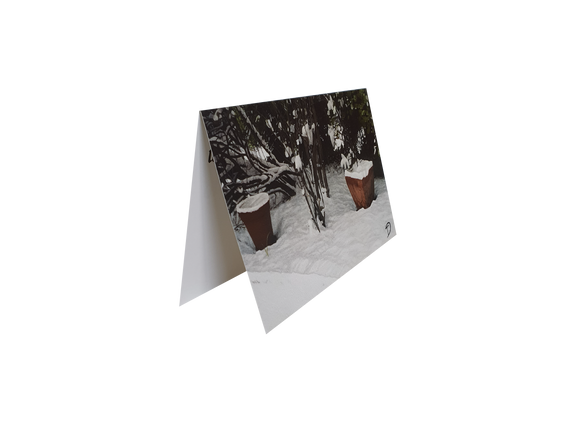 card-snow-at-cooleen-christmas-2010-blank-inside