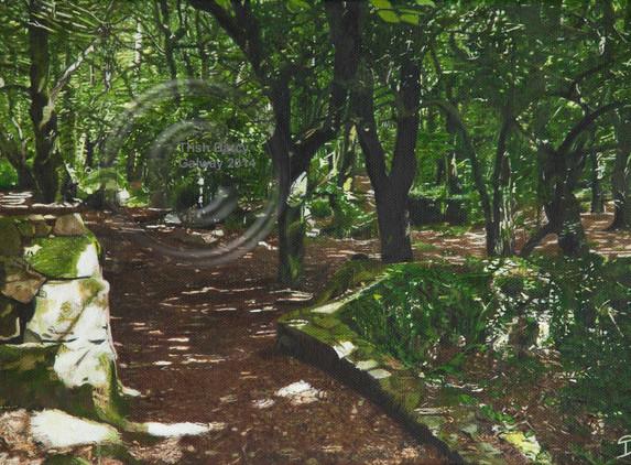 painting-download-sun-dance-in-barna-woods