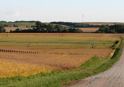 Dodge County Farm Ground