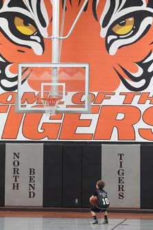 Big Tiger, Little Tiger