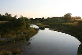 The Maple Creek