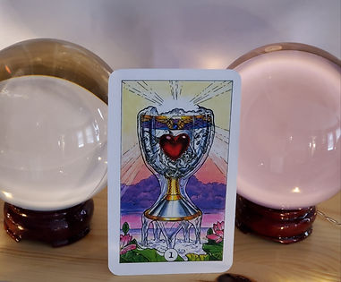 1 Of Cups Tarot