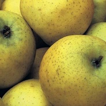 Pommes Delis or bio