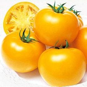 Tomates lemon boy bio (les 500g)
