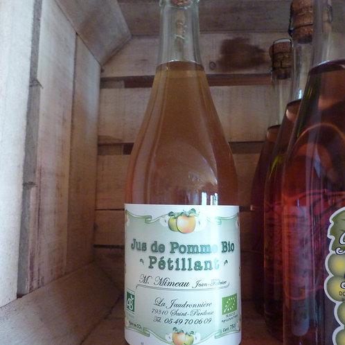 Pétillant de pomme bio (75cl)