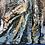 Thumbnail: Night Owl