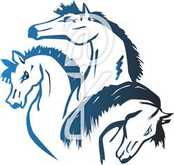 Horses-Color
