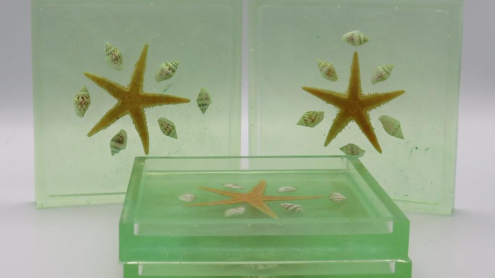 Starfish Drink Coaster Set