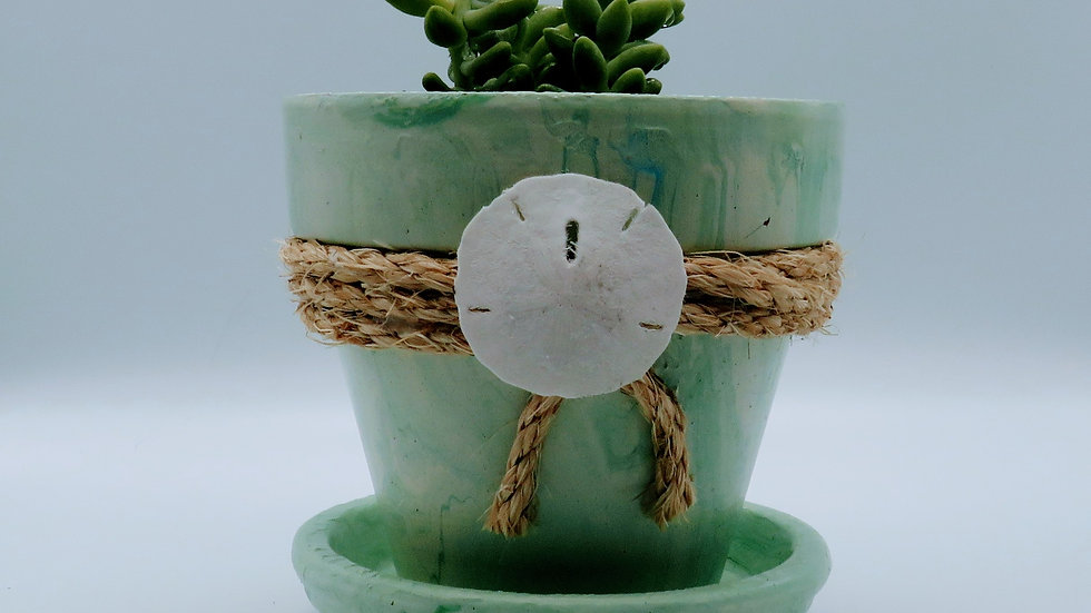 Tie Dyed Clay Pot with succulent plant