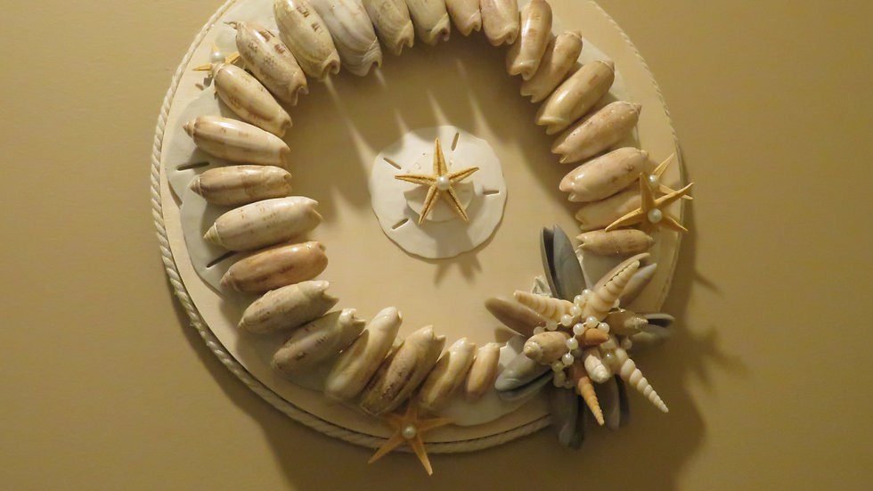 LARGE SAND DOLLAR AND OLIVE SEA SHELL WALL ART