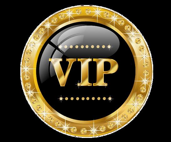 229-2290069_vip-logo-gold-png-transparen
