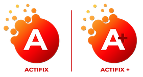 Logo actiflix side to side (1).png