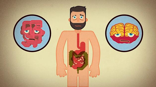 Insomnie Microbiote Acti-V