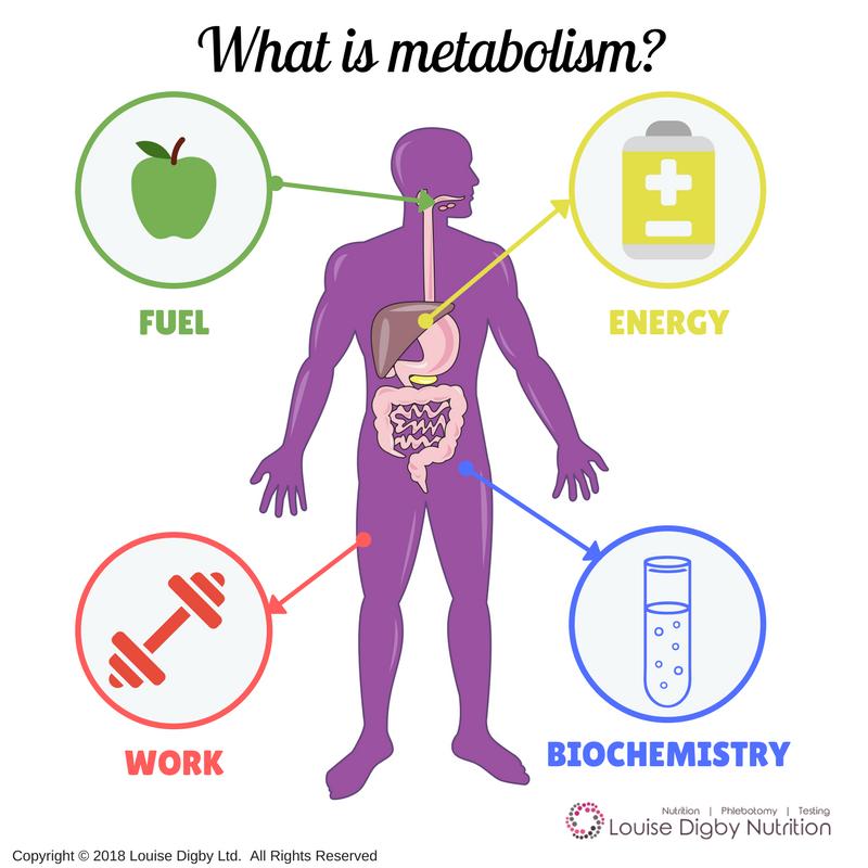métabolisme et ménopause
