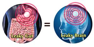 Microbiome Stress Anxiété