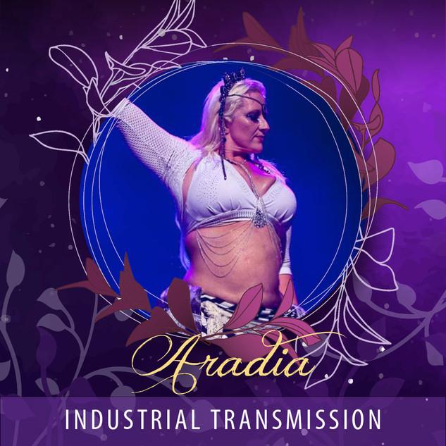 Aradia - Industrial Transmission AUD45