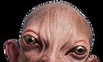 Gnome cutout_edited.png