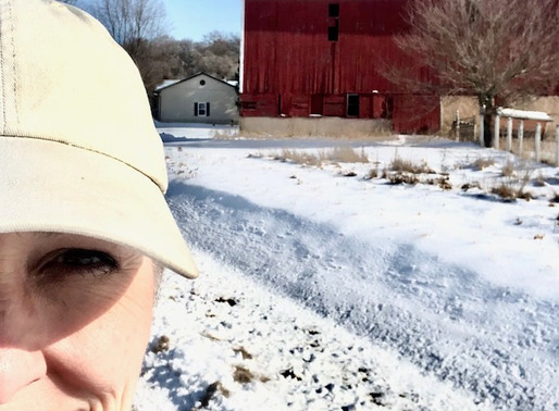 Go Wisconsin Barn Owners!