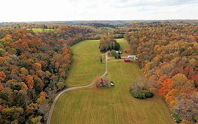 Beautifully maintained 113 +/-  farm for sale near Charlotte, TN