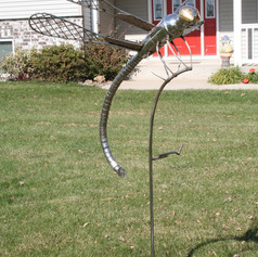 Dragon Fly - 4 Ft Wing Span