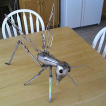 Grasshopper Two
