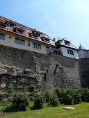 rothenberg4.jpg