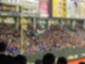 tokyobaseball.jpg