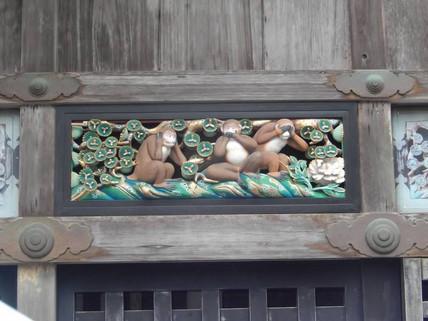 The famous monkeys