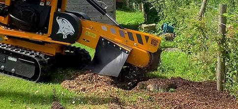 stump grinding 28rx.jpg