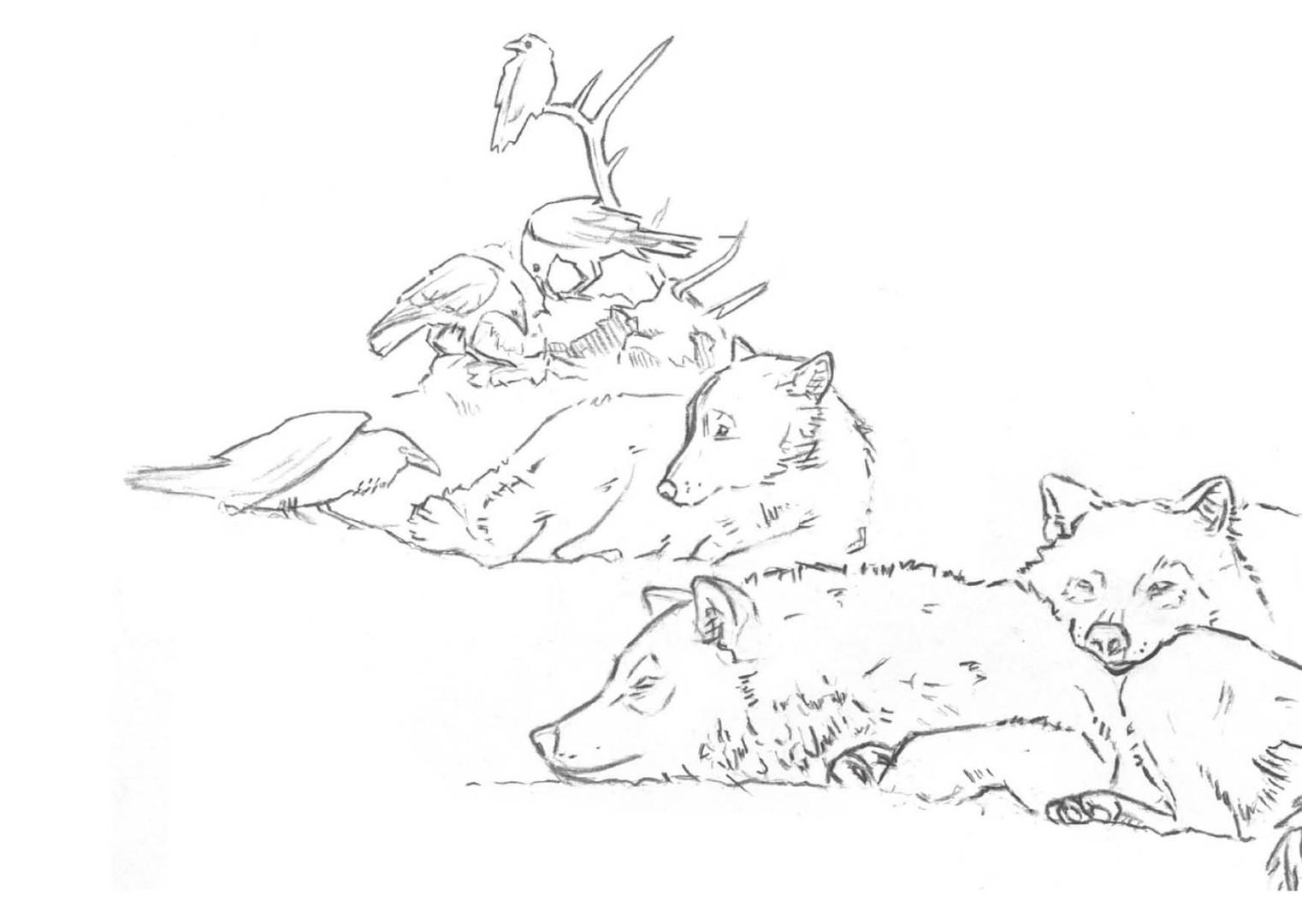Symbiose Rabe und Wolf.jpg