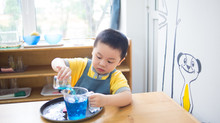 Introduction to the Benefits of Montessori Education
