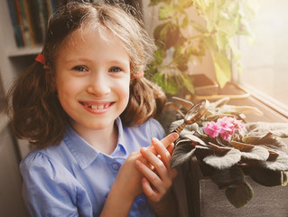 4 Key Aspects in Capturing the Montessori Experience at Home