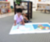 montessori ashburn