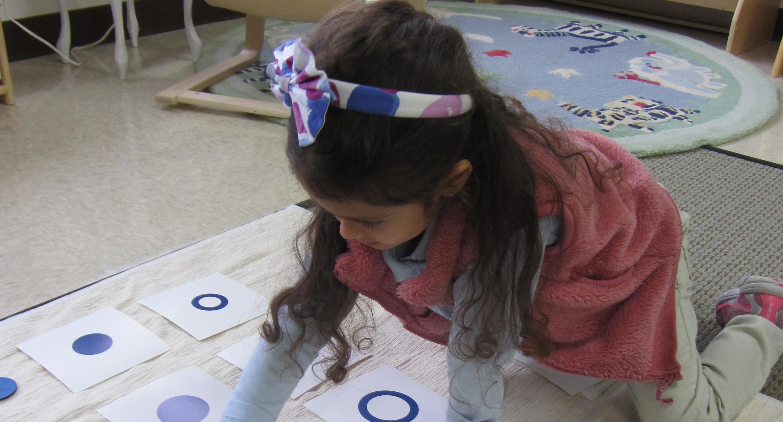 curriculum primary1