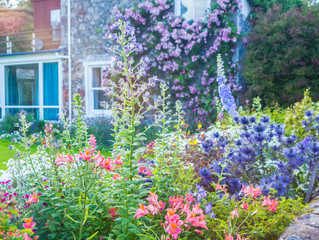 Add Curb Appeal to Your Homes' Spring Sprucing