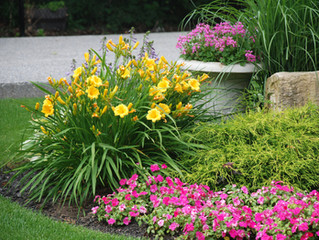Increase Your Home Value with Some Curb Appeal