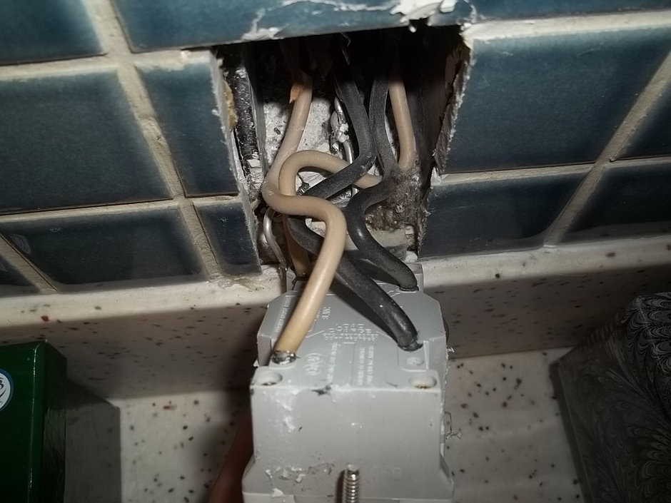 Houston Home Inspection Services Free Termite Inspection