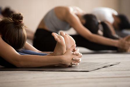 holistic hatha all levels yoga  physicians