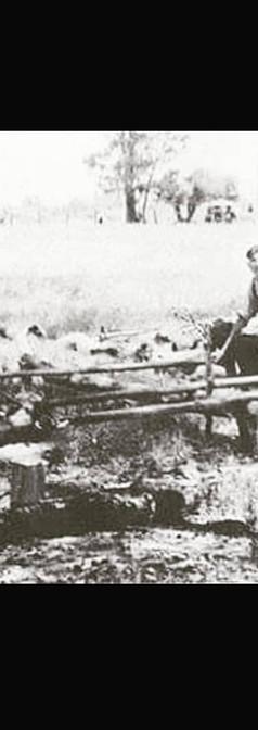 Croatian Australian Lamb on the spit.  Swan Valley