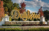 Dollywood-theme-park-NEWRIDES0818.jpg