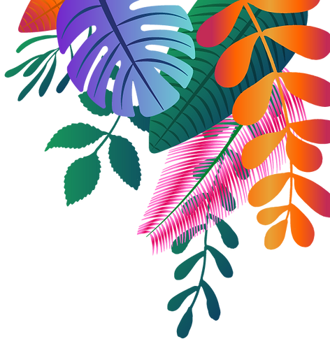 tropic-forms.png