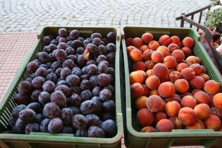 Švestky a broskve z našeho sadu