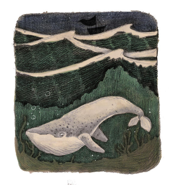 velryba v moři.jpg