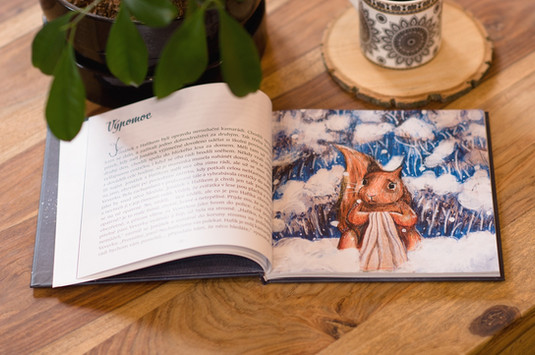 Ukázka knihy