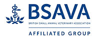 BSAVASmall.jpg