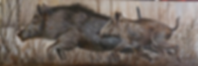 SANGLIER 120X40.png