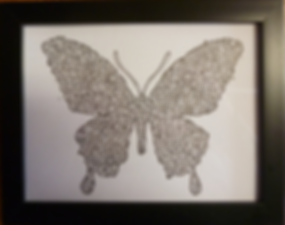 Papillon  25x20  35 e.png