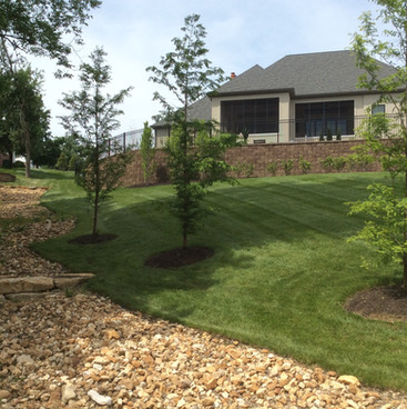 Dry creek bed and landscaping