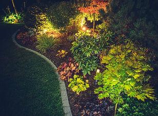 illuminated-backyard-garden-PDPZHSX.jpg
