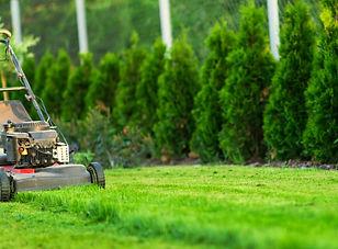 lawn-mower-W2EJ467_edited.jpg